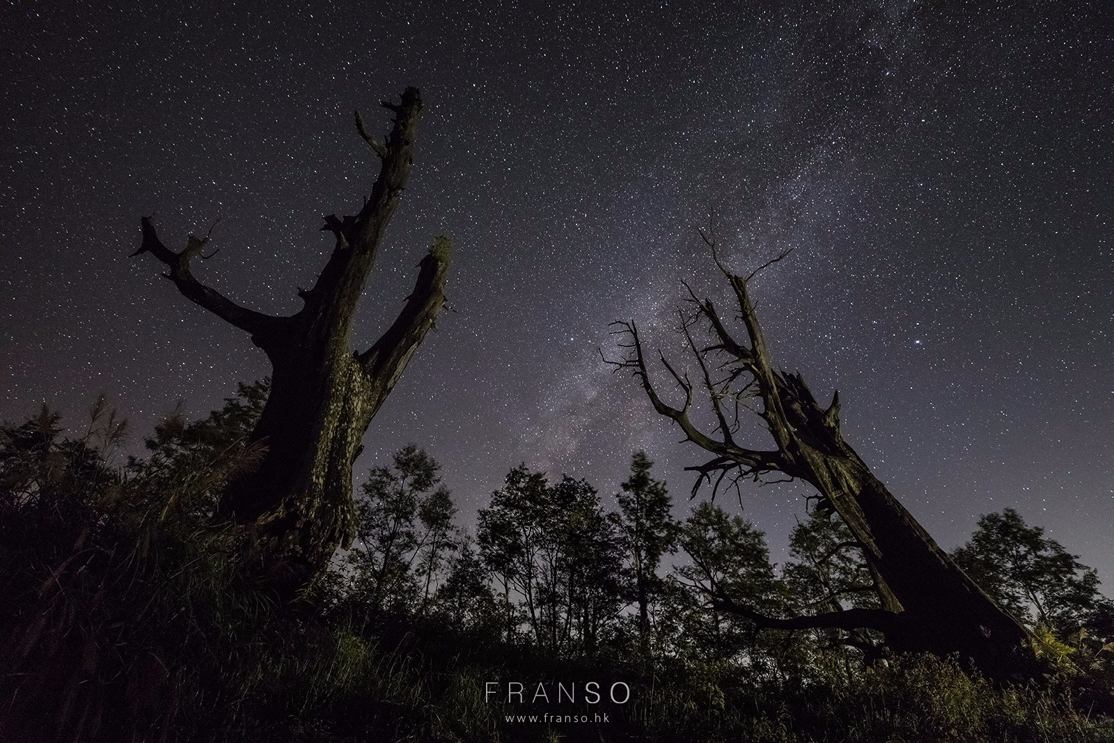 Starscape and Milkyway |  | The Couple Trees |